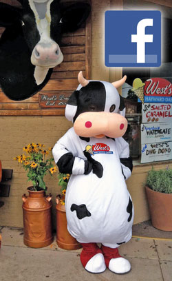 West's Dairy Like Us on Facebook